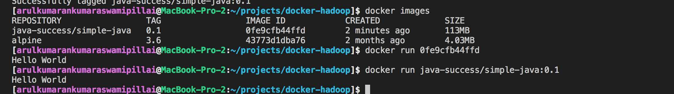 run.bat executed within a Docker container